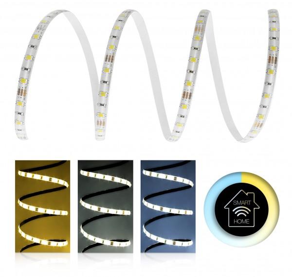 12V LED Streifen Set | CCT 2in1 | Trafo | Unterputz wählbar | 1 bis 12m wählbar | IP65