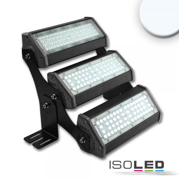 ISOLED 113751 LED Fluter/Hallenleuchte LN 3x 50W, IK10, 30°x70°, IP65, 1-10V dimmbar, kaltweiß