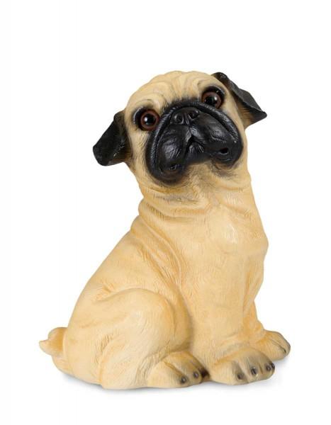 Heico 360684 Nachtlicht Bulldogge